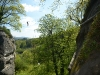 rappelling_and_high_rope_bridging_2016_3